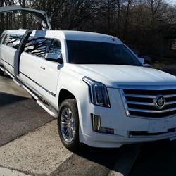 Gold Star Limousine